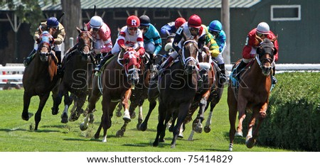 SARATOGA SPRINGS, NY - AUG 28, 2010: Thoroughbreds round the far turn on the turf course at Saratoga Race Course on Aug 28, 2010 in Saratoga Springs, NY. Saratoga begins its 2011 season on Jul 22.