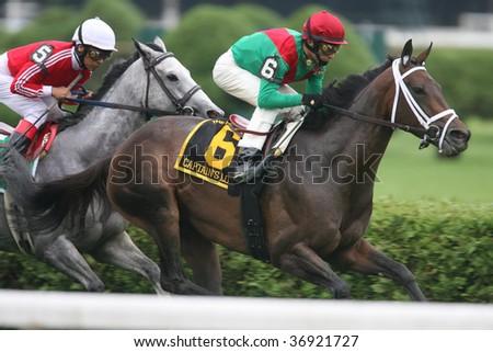 "SARATOGA SPRINGS, NY- AUGUST 29: ""Captain's Lover"" with John Velazquez aboard run in the Balston Spa Steaks at Saratoga Race Track, August 29, 2009 in Saratoga Springs, NY."
