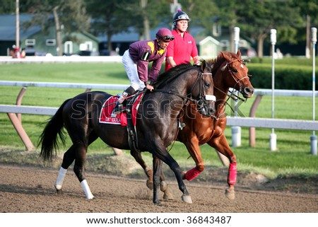 "SARATOGA SPRINGS, NY- SEPT 5: ""Da' Tara"" with Jose Lezcano aboard in the post parade for the Grade I Woodward Stakes at Saratoga Race Track, September 5, 2009 in Saratoga Springs, NY. - stock photo"