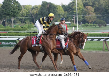 "SARATOGA SPRINGS, NY- SEPT 7: Ramon Dominguez on ""Astrologie (FR)"" in the post parade for the Grade III Glens Falls Stakes at Saratoga Race Track, September 7, 2009 in Saratoga Springs, NY."
