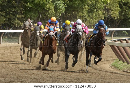 SARATOGA SPRINGS - SEPT 1: Jose Lezcano (blue) and Bellamy Brew lead the field en route to victory in the 1st race at Saratoga Race Course on September 2, 2012 in Saratoga Springs, NY.