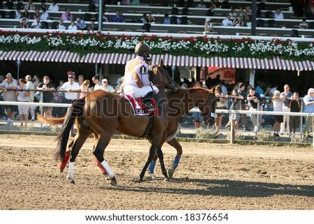 SARATOGA SPRINGS - September 1: Tejida with Robby Albarado Aboard in the Post Parade for the Grade III Glens Falls Stakes on September 1, 2008 in Saratoga Springs, NY