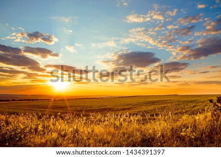 Saratov region, travel, landscape and nature of Russia. Yellow golden orange dramatic dawn at dawn or dusk over endless fields, hills, meadows. The sun rises in the morning above the horizon #1434391397