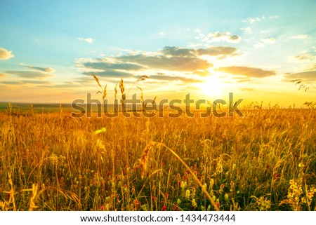 Saratov region, travel, landscape and nature of Russia. Yellow golden orange dramatic dawn at dawn over endless fields, hills, meadows. The sun rises on a warm summer morning above the horizon #1434473444