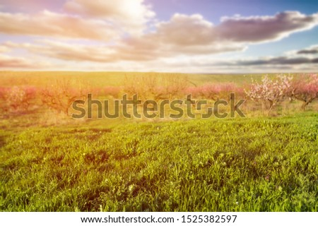 Saratov region, travel, landscape and nature of Russia. Yellow golden orange dramatic dawn at dawn or dusk over endless fields, hills, meadows. The sun rises in the morning above the horizon