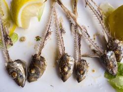 Sardines bones after a delicous spanish tapas meal lemon bone head fish salad healthy food rest eaten