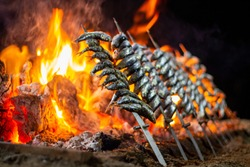 sardines party cook fire stick