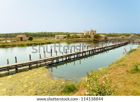 Sardinia, Cabras, Oristano - fishpond
