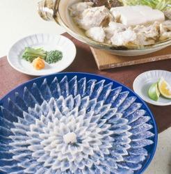 Sashimi of thinly sliced fugu and fugu hot pot
