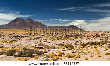 Saucer clouds in the Atacama desert, Chile
