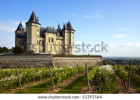 Saumur castle in the Loire Valley, vineyards in front