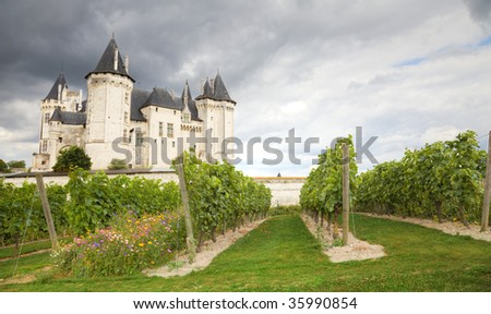 Saumur Chateau and vineyard from Loire Valley, France