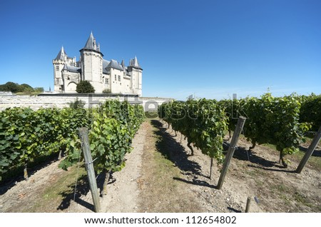 SAUMUR, FRANCE - AUGUST 17: Castle and vineyard on August 17, 2012 in Saumur: Built in the tenth century and rebuilt in 1067, is one of the most famous castles of the Loire Valley. - stock photo