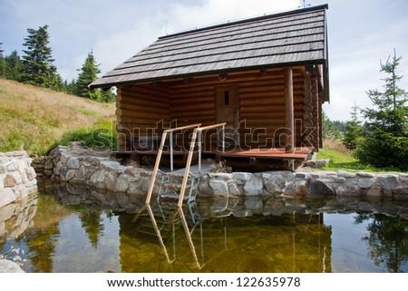 Sauna log cabin with pool