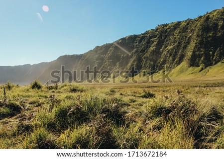 Savana and Teletubbies Hill at Bromo Tengger Semeru National Park, East Java, Indonesia Foto stock ©