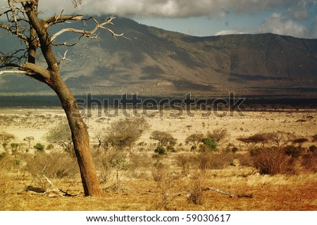 Savanna in Kenya - deserts, mountains and some trees