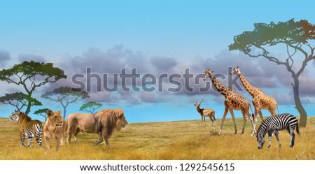 Savanna predators and wild animals group, collage #1292545615