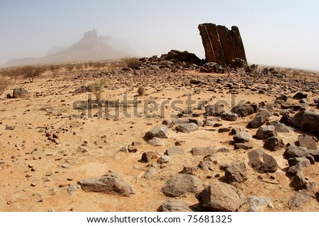 Savannah desert in Mali, Africa