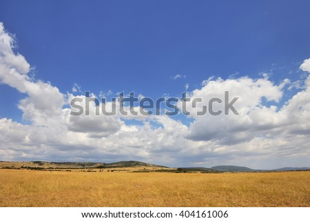 Savannah landscape in the National park of Kenya, Africa #404161006