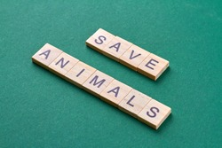 Save animals concept. Words made of wooden blocks isolated on green background.