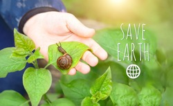 Save earth. snail on kids hand. Nature care, earth day concept. Exploring animals and nature.