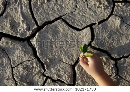 Save the world! A little kid wants to plant a crop in the dry, cracked earth.