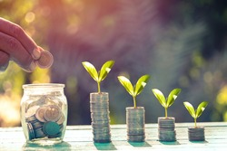 Saving  money. A hand putting coins in bottle and growing tree on coins. The coins in the bottle for save money.investment,bank,finance,Photo financial saving and Saving.