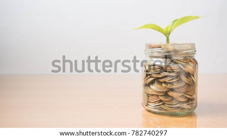 Saving money and financial planning concept. Plants growing on glass of coins or piggy bank on wooden table. Idea for wealth, business growth, investment and retirement plan. Copy space.