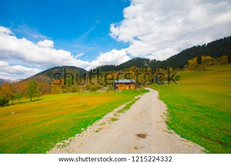 Savsat, Artvin, beautiful fall scenery in Turkey, small houses and springs #1215224332