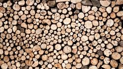 Saw timber prepared for winter heating season