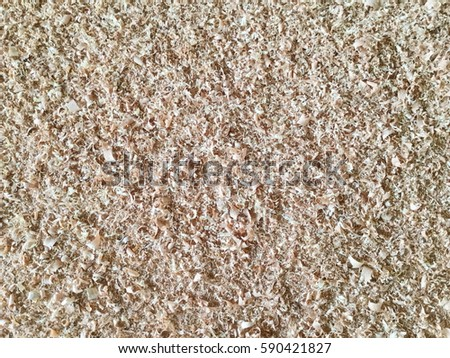 Sawdust of dry alder wood with pieces of dry brown bark on ground.  #590421827