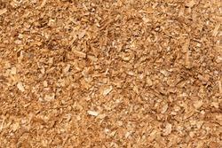 Sawdust or wood dust texture background. Wood sawdust background closeup. Sawdust floor texture. Top view. Saw dust texture, close-up background of brown sawdust.