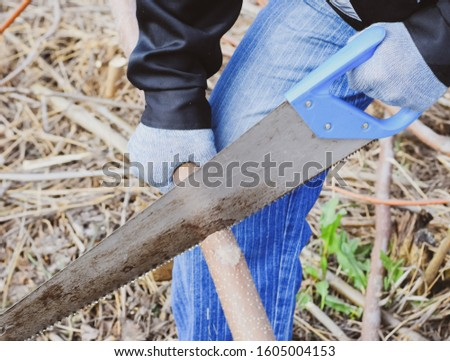 Sawing with a hand saw of a wood branch. man saws sawing a tree branch. Wood sawing with a hand saw.