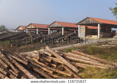 Sawmill in early morning fog