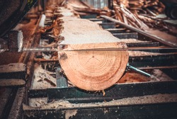 Sawmill. Process of machining logs in equipment sawmill machine saw saws the tree trunk on the plank boards. Wood sawdust work sawing timber wood wooden woodworking