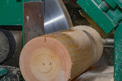 Sawmill. Process of machining logs in equipment sawmill machine saw saws tree trunk. Wood sawdust work sawing timber wood wooden woodworking. Lumber Industry