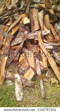 sawn timber and firewood