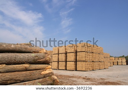 Sawn trees and wooden packing crates (horizontal)