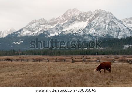 Sawtooth Mountains outside of Stanley, Idaho