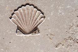 Scallop Seashell  - Symbol of Pilgrimage / Marble background with engraved scallop seashell, symbol of pilgrimage, Santiago de Compostela