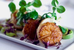 Scallops. Sautéed scallops seared in butter, garlic, shallots, red wine, tarragon, salt and pepper and served with toasted baguettes. Classic French bistro entree.