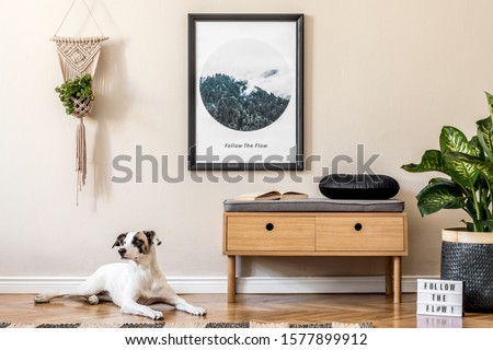 Scandinavian and design home interior of living room with wooden commode,rattan basket with plants, and elegant accessories. Stylish home decor. Template. Mock up poster frame. Dog lying on the floor.