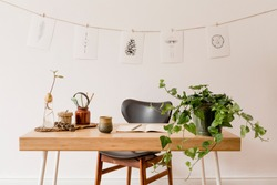 Scandinavian interior of home office space with wooden desk, design chair, forest accessories, avocado plant, plants and office supplies. Stylish drawings on the white wall. Botanical home decor.