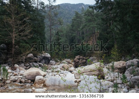 Scandinavian nature. Mountain river. Landscape of forest and mountain river. Mountain river in the forest. Big white stones in a mountain river.