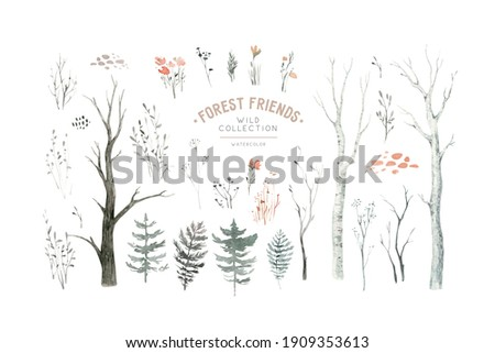 Scandinavian Watercolor natural set of green trees, birch and pine, mountain ash, forest. Winter vintage collection isolated on white background. Woodland design elements.
