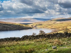 Scar House reservoir in Nidderdale - with water and mountains and blue cloudy skies. A dry stone wall is in the foreground and Swaledale sheep are overlooking the water. It is a beautiful Spring day