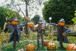 Scarecrow and Halloween pumpkin head jack o lantern statues for Halloween decoration theme in an outdoor public garden, scary pumpkins on the ground. Toned Photo, dark tone for Halloween concept