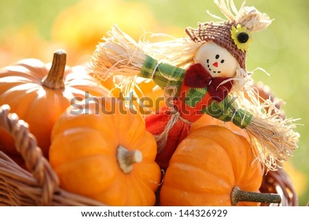 Scarecrow and pumpkins on colorful autumn background