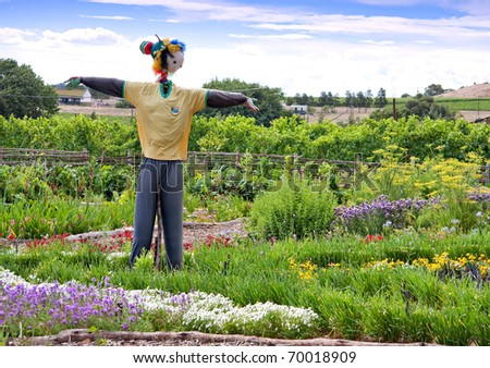 scarecrow in garden patch of flowers