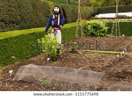 Scarecrow in the garden #1115775698